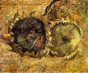 Van Gogha Słoneczniki